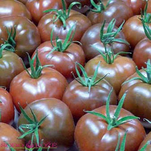 Skiepytas Pomidoras
