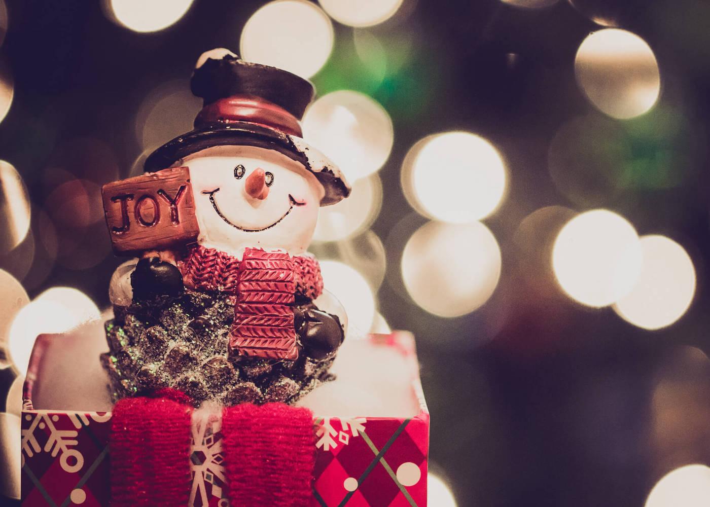 Kalėdinės eglutės tiesiai į Jūsų namus ar biurą!