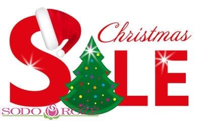 AKCIJA. Kalėdinėms eglutėms – 20%
