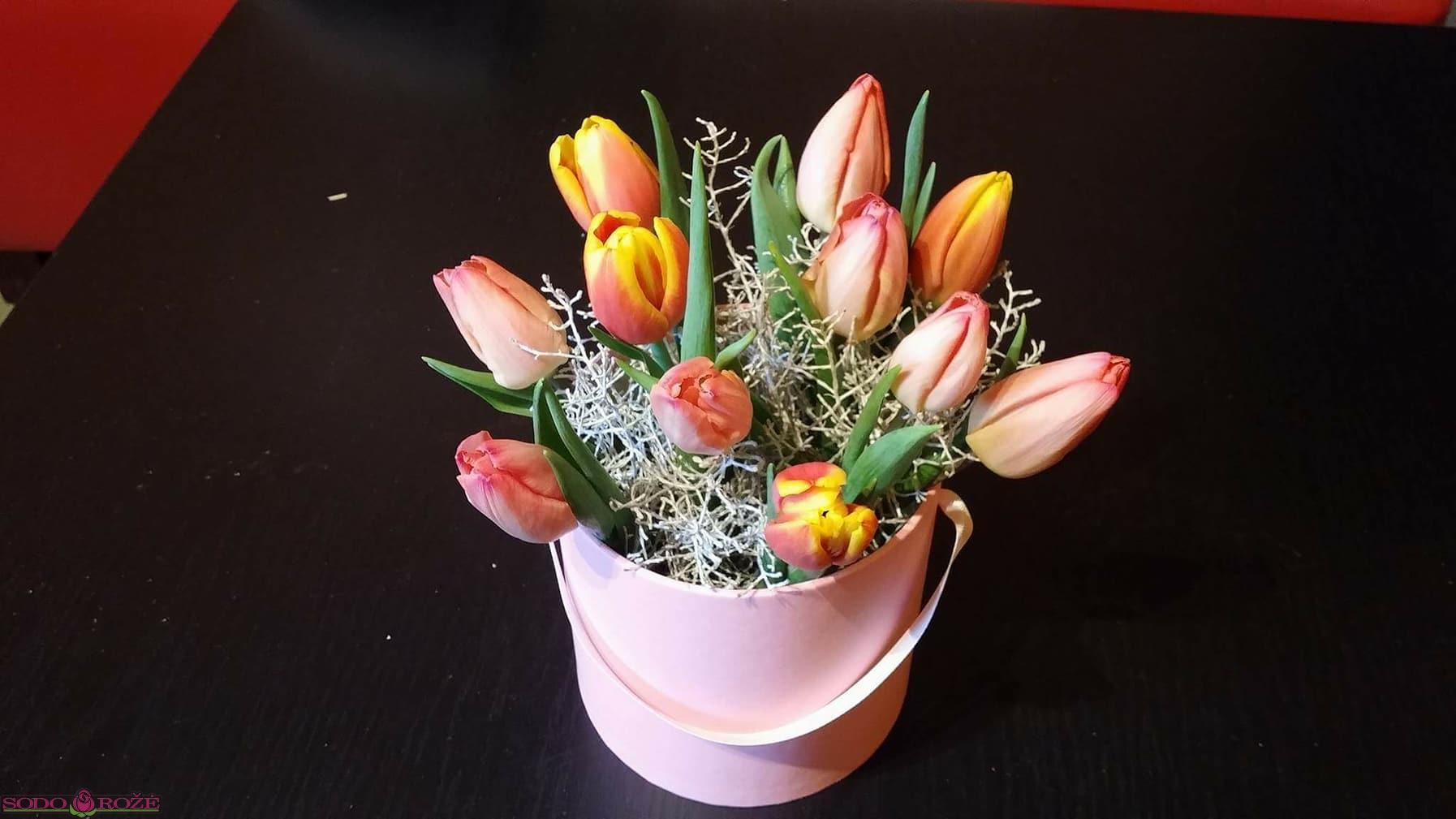 Tulpių dėžutė (11vnt.)
