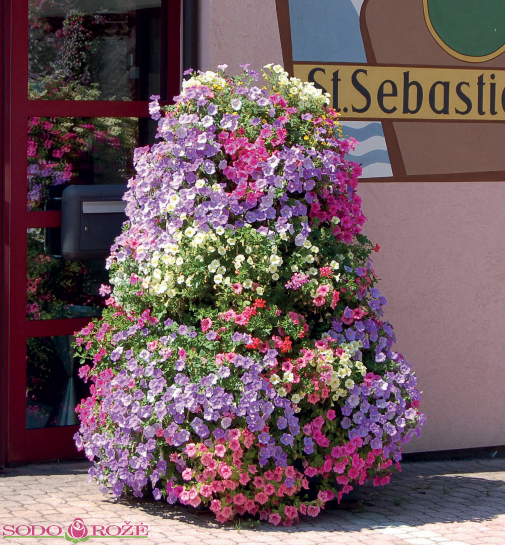 Plantscape® gėlių piramidė PFT3