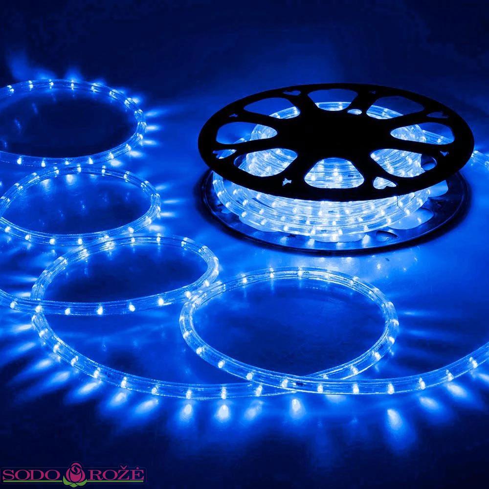 PRO LED žarna mėlyna